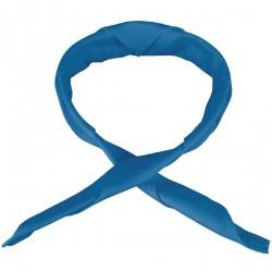 Tour de cou bleu